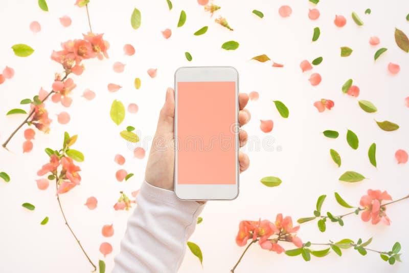 Насмешка мобильного телефона вверх в женской руке с украшением весеннего времени стоковые фото