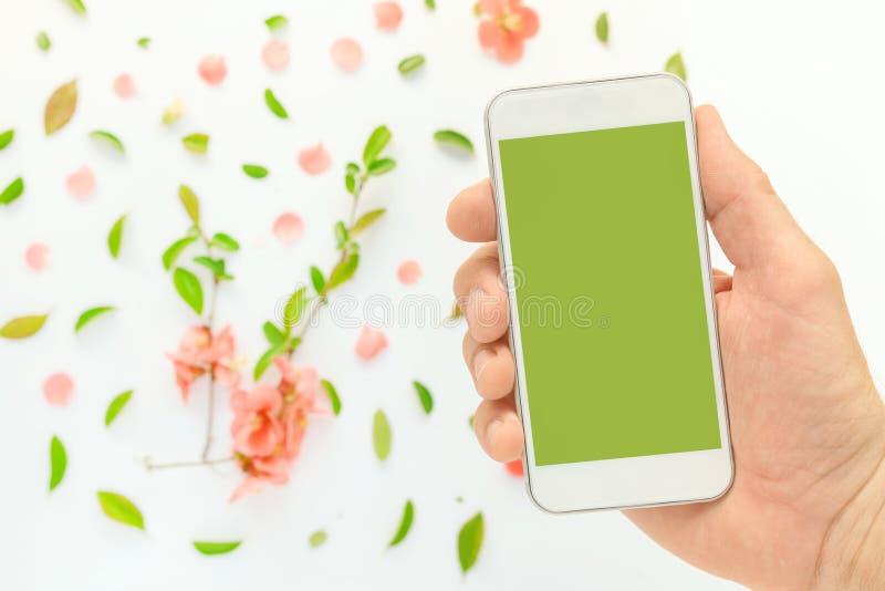 Насмешка мобильного телефона вверх в мужской руке с украшением весеннего времени стоковые фото