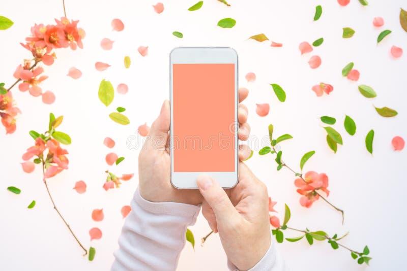 Насмешка смартфона вверх в женской руке с украшением весеннего времен стоковое фото rf