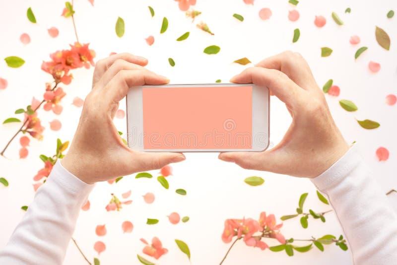 Насмешка смартфона вверх в женской руке с украшением весеннего времени стоковое изображение