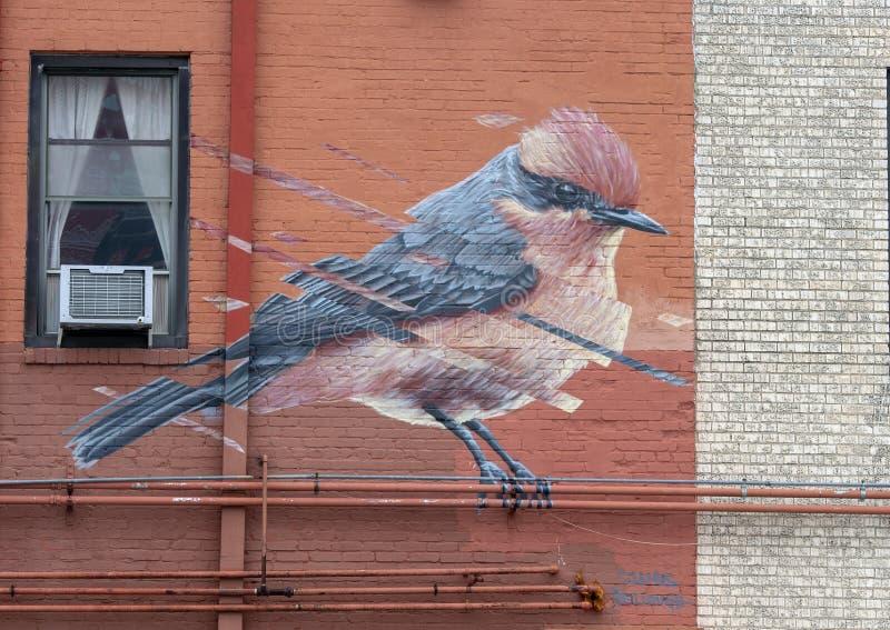 Настенная роспись стены птицы Джеймс Bullough, Далласом, Техасом стоковые фото