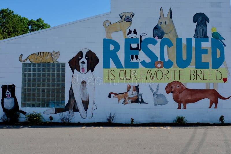 Настенная роспись стены SPCA для спасенных животных стоковое изображение