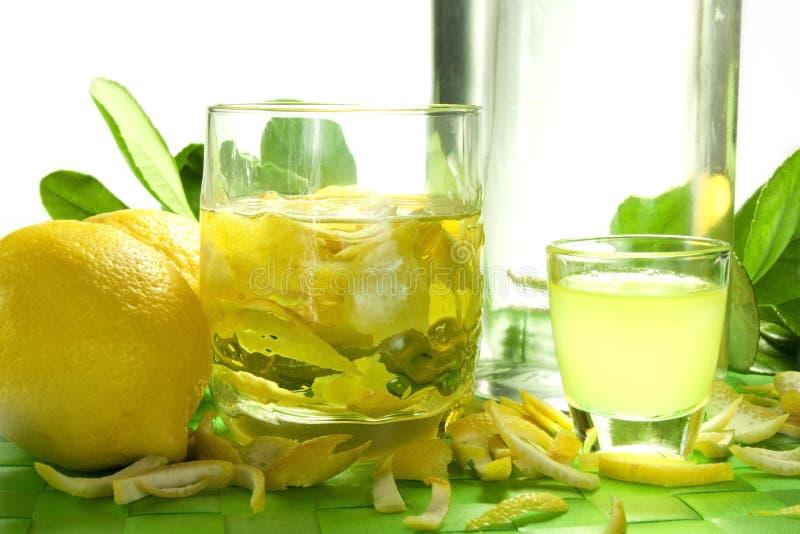 Настойка лимона стоковое фото