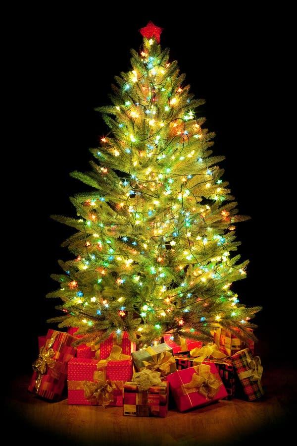 Настоящие моменты вокруг рождественской елки стоковое фото