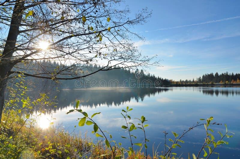 Настроение осени на озере стоковое фото