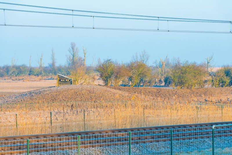 Натренируйте катание через замороженное поле в солнечном свете стоковые изображения rf