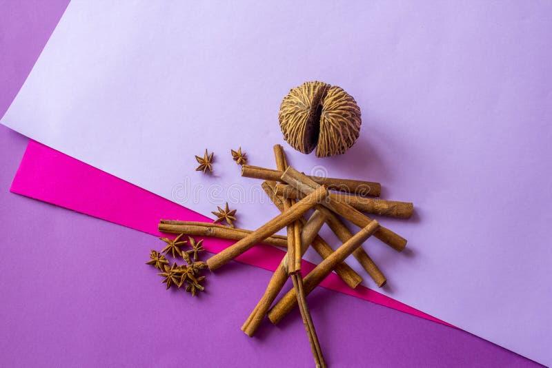 Натюрморт искусственных кокоса, ручек циннамона и звезд анисовки лежа на покрашенной предпосылке стоковые изображения rf