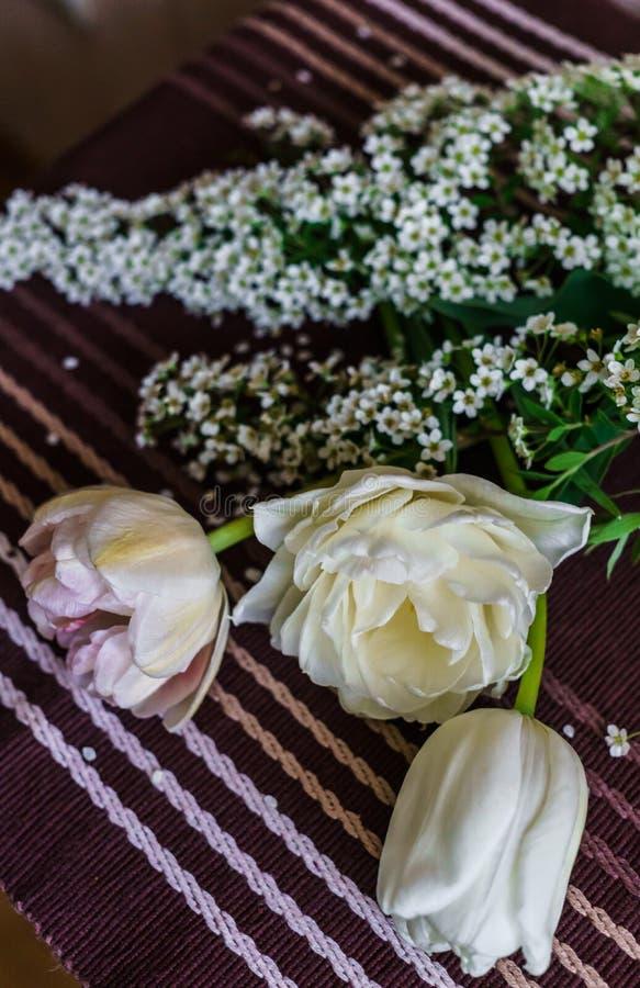 Натюрморт мягких розовых тюльпанов с хворостинами spirea стоковое фото