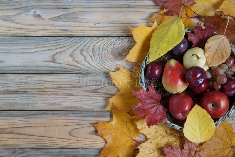 Натюрморт осени с различными плодоовощами лежит в плетеной корзине Листья клена и тополя осени стоковые фото