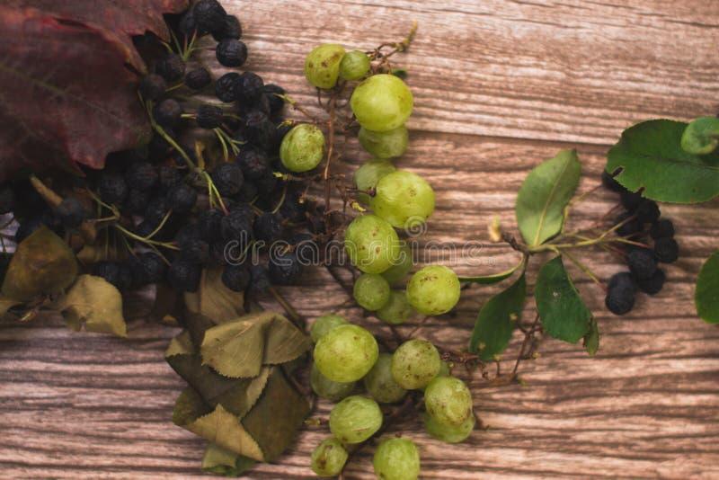 Натюрморт осени: chokeberry с желтым цветом выходит на деревянную предпосылку стоковое изображение rf