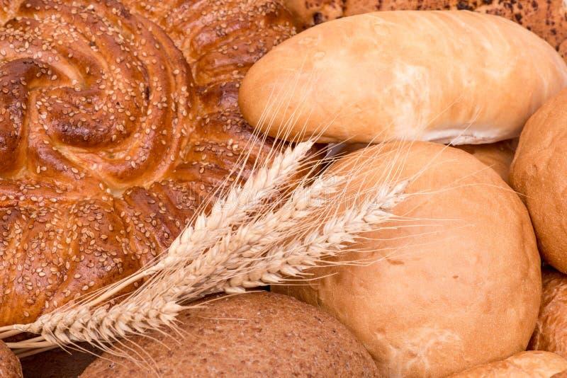 Натюрморт различных видов хлеба стоковые фотографии rf
