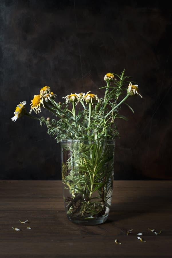 Натюрморт с вянуть цветками стоковые фото