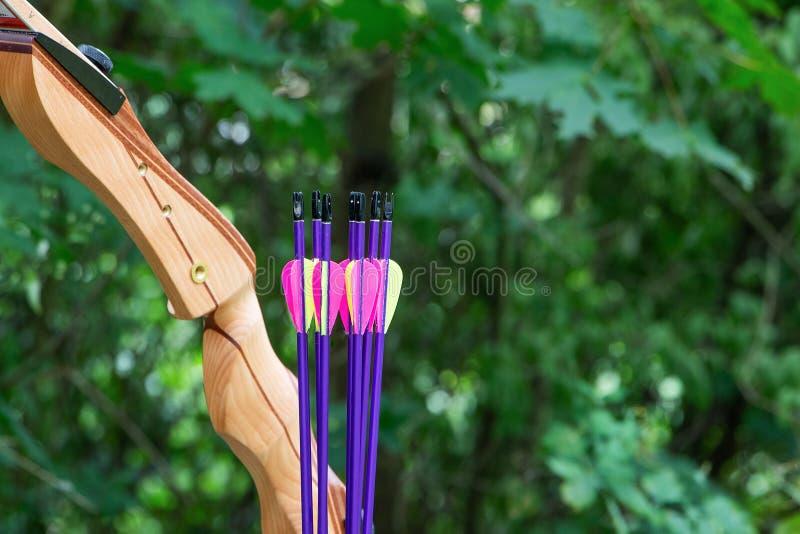 Натюрморт с луком и стрелы в зеленой природе, лесе стоковые изображения