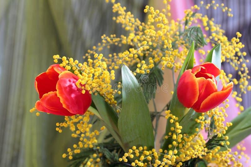 Download Натюрморт с мимозой красных тюльпанов желтой Стоковое Фото - изображение насчитывающей настроение, симпатично: 37928396