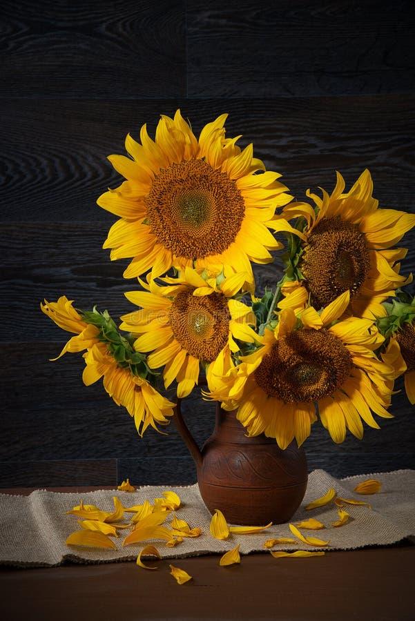 Натюрморт с солнцецветами в глиняном горшке против деревянной стены стоковые фотографии rf