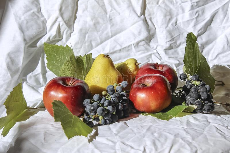 Натюрморт с яблоками и грушами стоковые фотографии rf