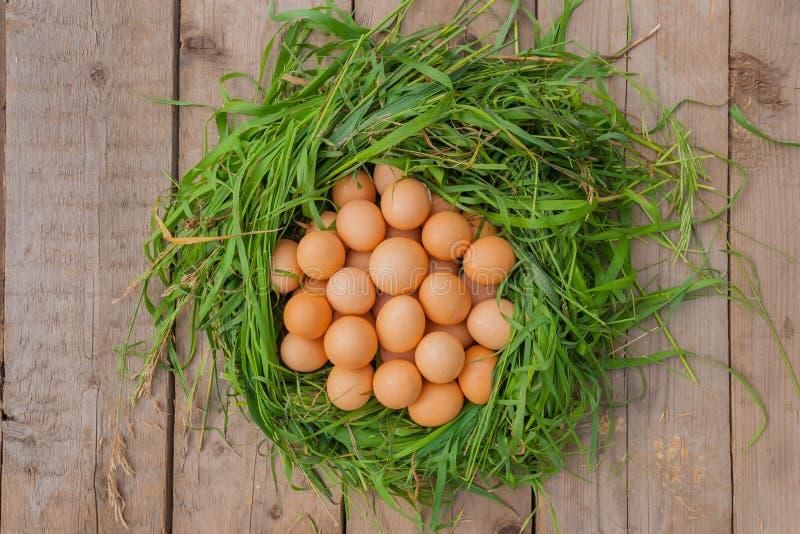 Натюрморт яичек цыпленка стоковая фотография rf