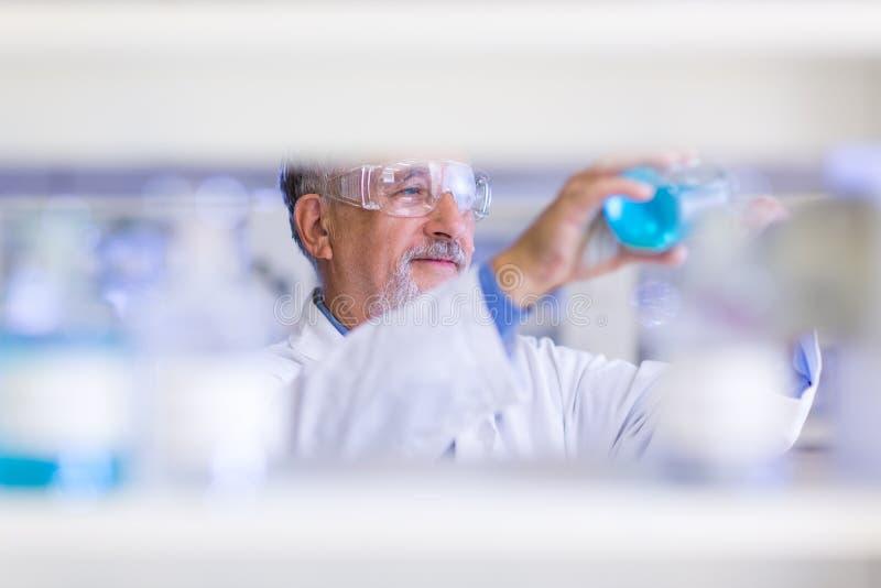Научное исследование старшего мужского исследователя унося в лаборатории стоковое изображение rf