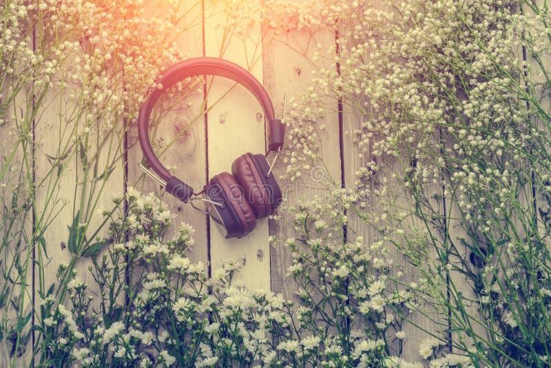 Наушники с рамкой красивого цветка на деревянной предпосылке mu стоковые изображения