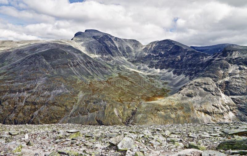 национальное rondane парка Норвегии стоковые изображения