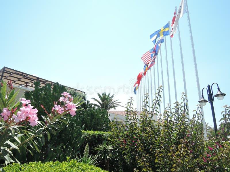Национальные флаги различных стран летая в ветер Флаги стран около международного отеля Греция, Крит - стоковая фотография rf
