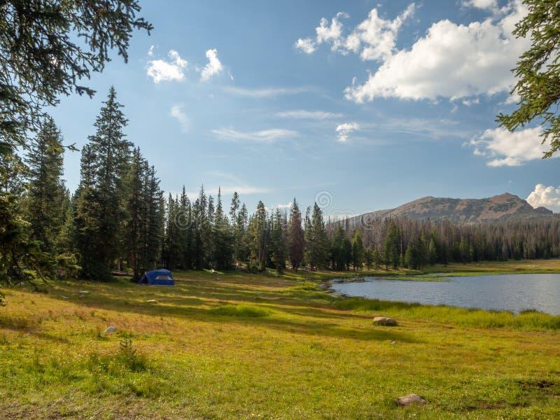 Национальный лес Uinta-Уосат-тайника, озеро зеркал, Юта, Соединенные Штаты, Америка, около озера предкрылк и Park City стоковое фото