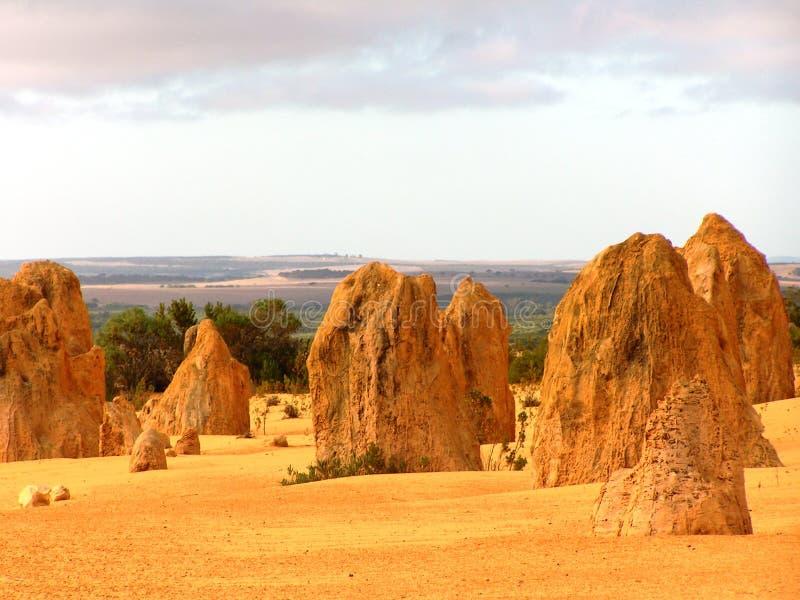 национальный парк Австралии стоковая фотография
