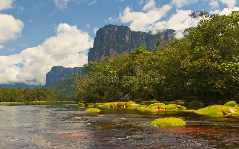 национальный парк Венесуэла canaima стоковые изображения rf