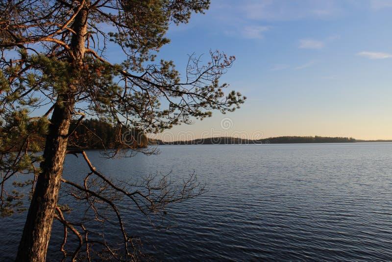 Национальный парк в Финляндии стоковое изображение rf