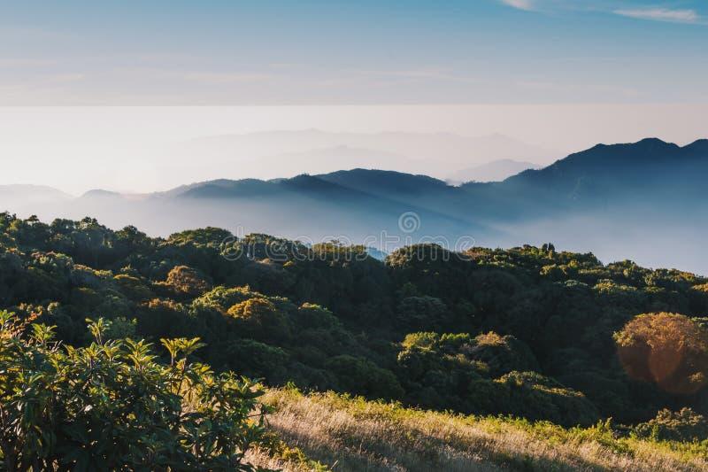 Национальный парк Дои Интанон, Чиангмай, Таиланд стоковые фотографии rf