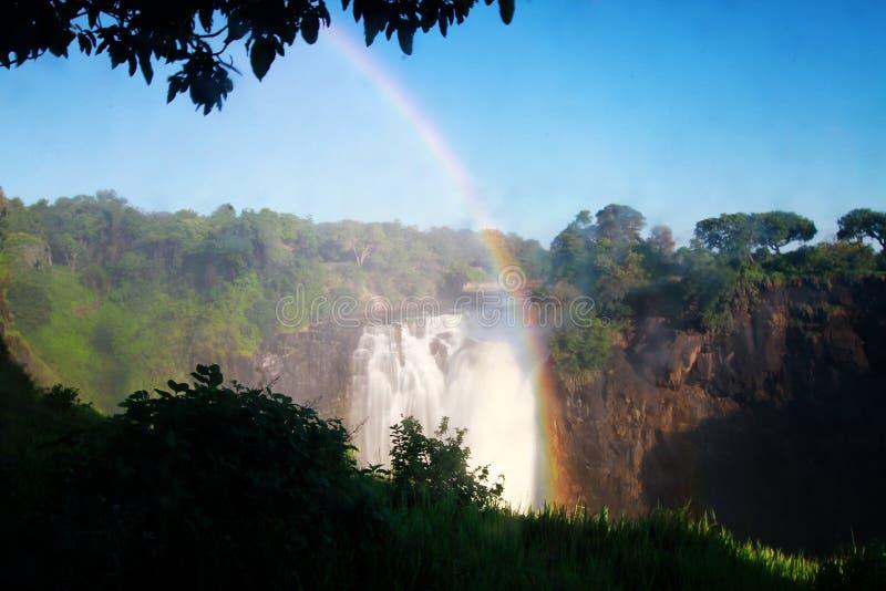 Национальный парк Зимбабве Victoria Falls стоковые фото