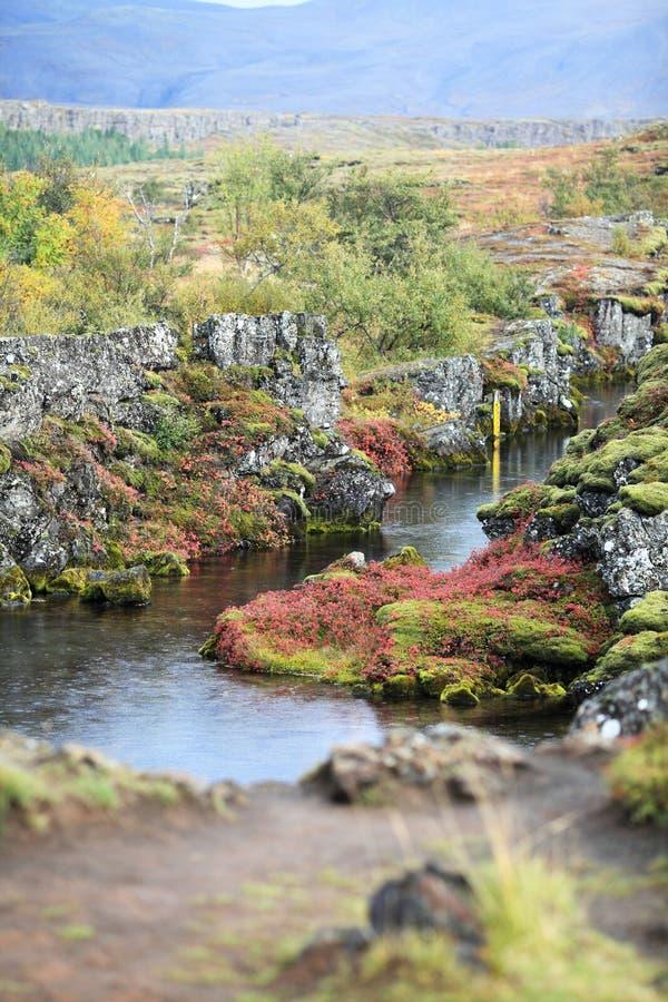 национальный парк Исландии стоковое изображение rf