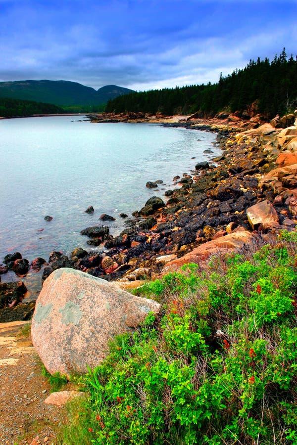 национальный парк Мейна acadia стоковые изображения rf