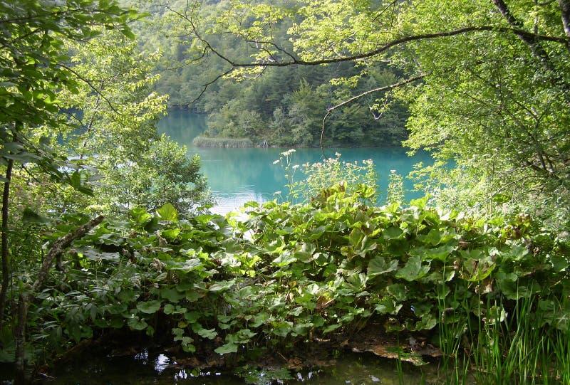 Национальный парк озер Хорвати-Plitvice стоковые изображения