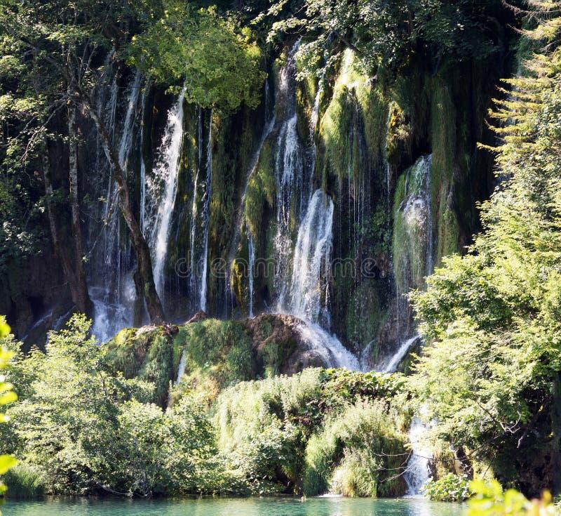 Национальный парк озер Plitvice - один из водопадов Хорватия стоковое изображение