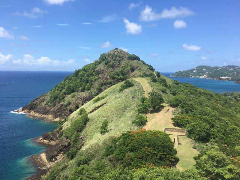 Национальный парк Сент-Люсия голубя стоковое фото rf