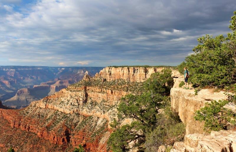 национальный парк США каньона Аризоны грандиозный стоковое изображение rf