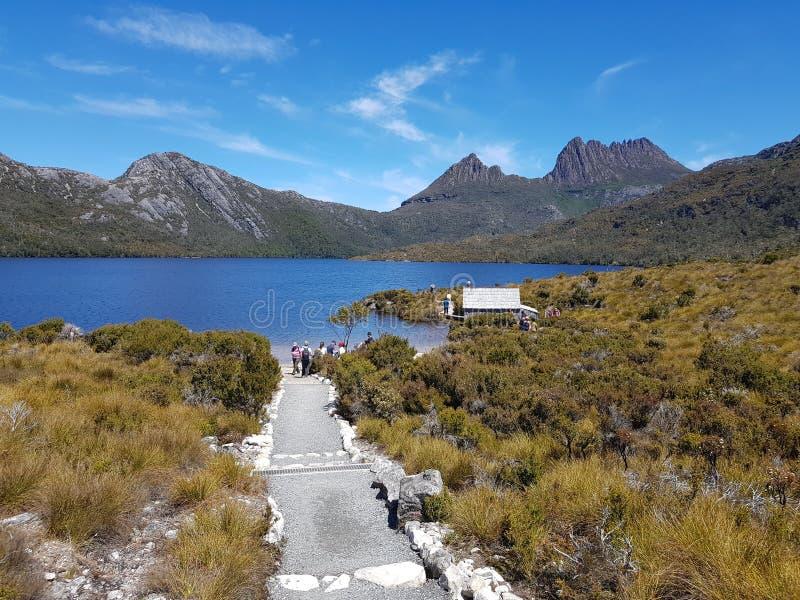 Национальный парк Тасмания Австралия горы вашгерда стоковые фото