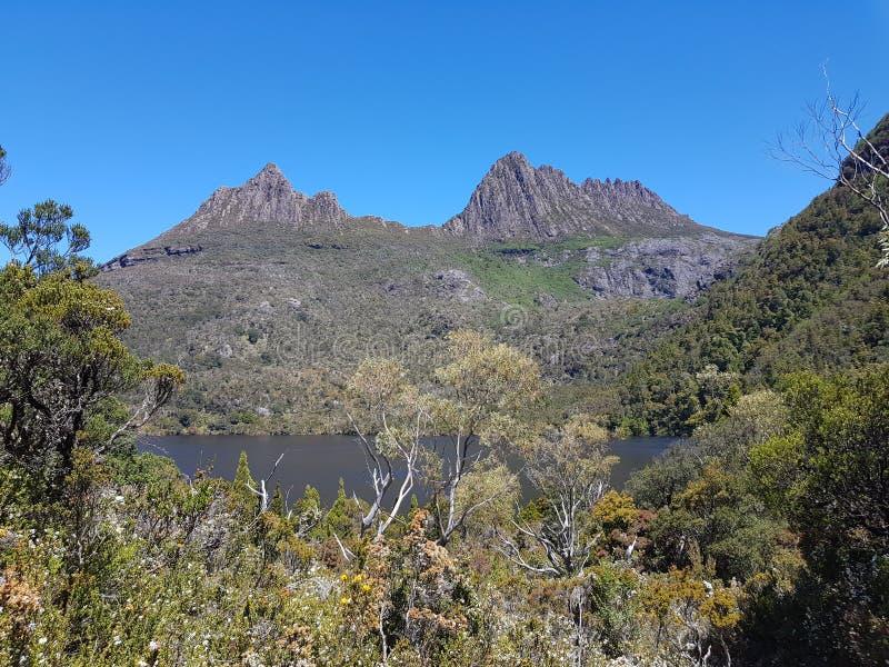 Национальный парк Тасмания Австралия горы вашгерда стоковое изображение rf