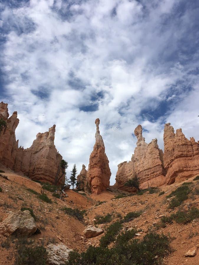 Национальный парк Bryce стоковые изображения