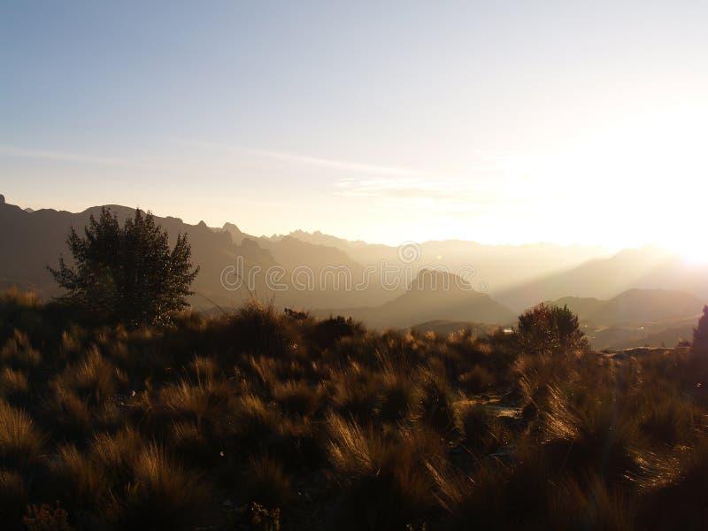 Национальный парк Cajas стоковые изображения