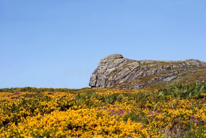 Download национальный парк dartmoor стоковое изображение. изображение насчитывающей наследие - 1186867