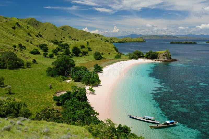 национальный парк komodo Индонесии flores стоковое фото