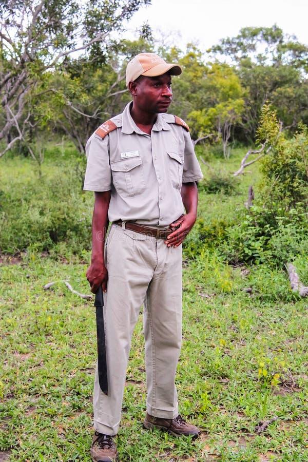 Национальный парк Kruger, Южная Африка - 2011: Проводник сафари держа мачете стоковое фото rf