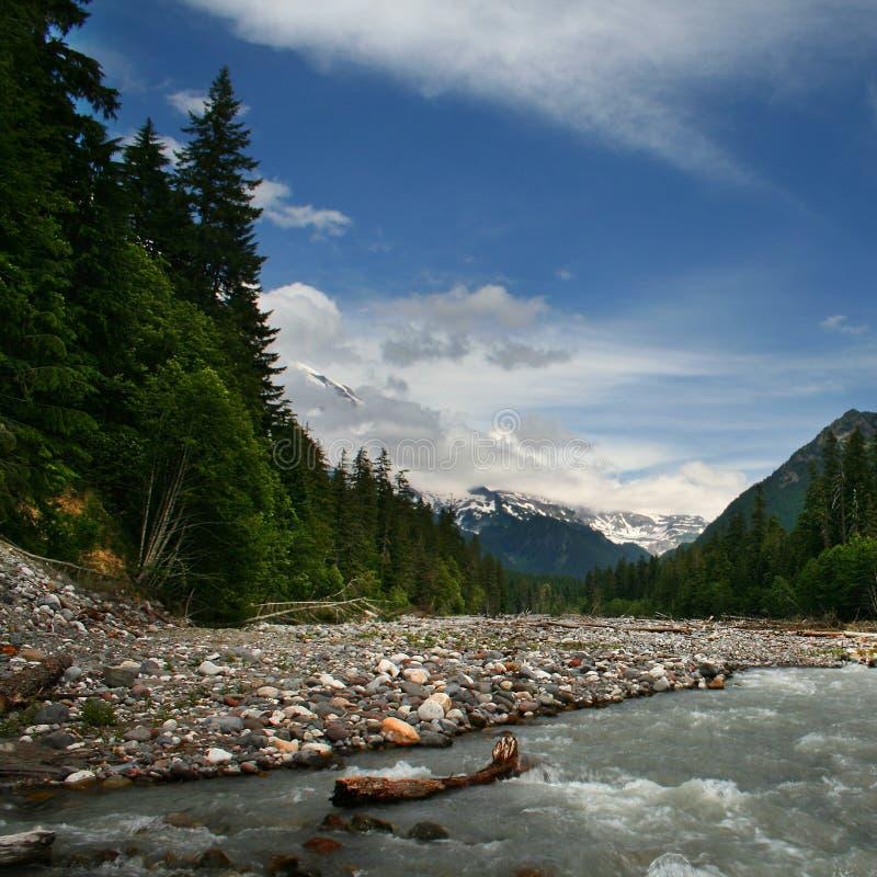 национальный парк mt более ненастный стоковое изображение