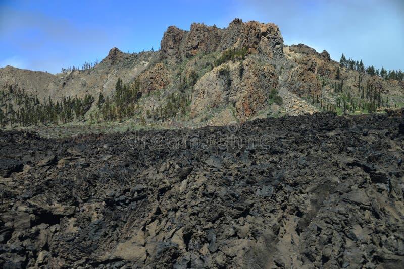 Национальный парк Teide - Тенерифе стоковые изображения rf