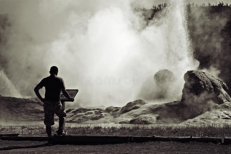 национальный парк yellowstone стоковые фотографии rf