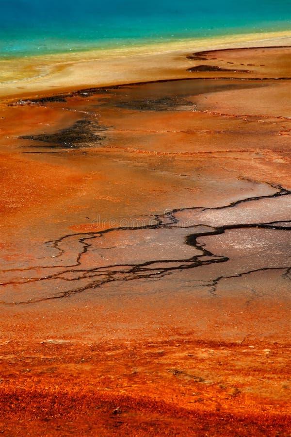 национальный парк yellowstone стоковая фотография rf