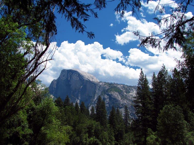национальный парк yosemite california стоковые изображения rf