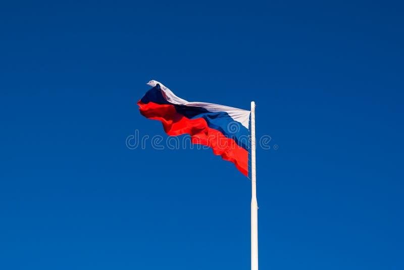 Национальный флаг России на ветре флагштока порхая против голубого неба Россия стоковые изображения